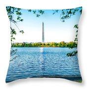 Reflection Of Washington Throw Pillow