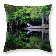 Reflection Off The Withlacoochee River Throw Pillow