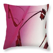 Reflection On A Red Automobile Throw Pillow