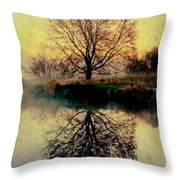 Reflection On Golden Pond Throw Pillow