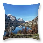 Reflection On St Mary Lake Through Burned Trees Throw Pillow