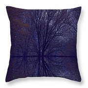 Reflection On Trees In The Dark Throw Pillow