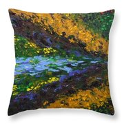 Reflection One Throw Pillow