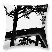 Reflection Study Throw Pillow
