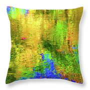Reflections #2 Throw Pillow