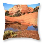 Reflections After The Storm Throw Pillow