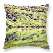 Reflections Alaska  Throw Pillow