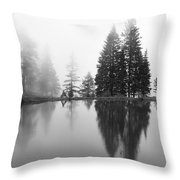 Reflections And Fog Throw Pillow