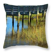 Reflections And Sea Grass Throw Pillow