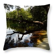 Reflections And Shadows Throw Pillow by Warren Thompson