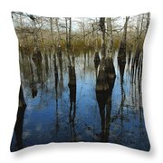 Reflections At Big Cypress Throw Pillow