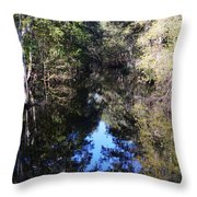Reflections At Camps Creek  Throw Pillow