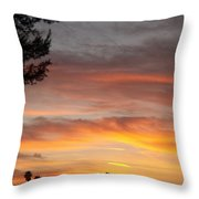 Reflections At The Close Of Day Throw Pillow