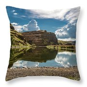 Reflections At The Pond Throw Pillow