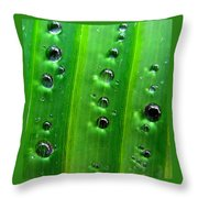 Reflections Drops Throw Pillow