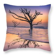 Reflections Erased - Botany Bay Throw Pillow