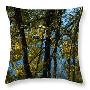 Reflections Fall Throw Pillow