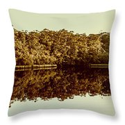 Reflections From Cockle Creek  Throw Pillow