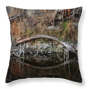 Reflections Iguana Throw Pillow