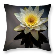 Reflections In A Pond Throw Pillow