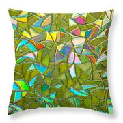 Reflections In A Window Throw Pillow