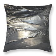 Reflections In Dark Ice 3 Throw Pillow