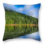 Reflections In Green Throw Pillow