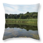 Reflections In The Marsh Throw Pillow