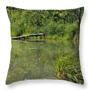 Reflections In The Pond Throw Pillow
