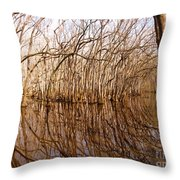 Reflections In The Swamp Throw Pillow