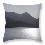 Reflections King Cove Throw Pillow