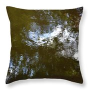 Reflections No2 Throw Pillow