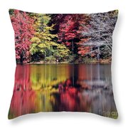 Reflections Of A Bare Grey Tree Throw Pillow