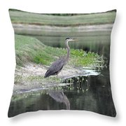 Reflections Of A Blue Heron Throw Pillow