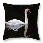 Reflections Of A Swimming Swan Throw Pillow