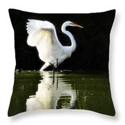 Reflections Of An Angel  Throw Pillow