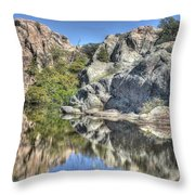 Reflections Of Beauty Throw Pillow