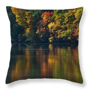Reflections Of Colors Throw Pillow