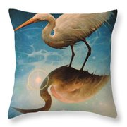 Reflections Of Creation Throw Pillow