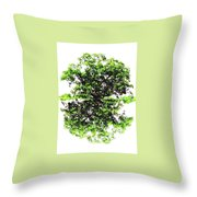 Reflections On Life Throw Pillow