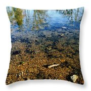 Reflections Of Nature Throw Pillow