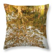 Reflections Of Old Miss Throw Pillow