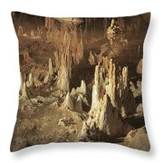 Reflections Of Reality Throw Pillow