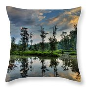 Reflections Of The Morning Throw Pillow