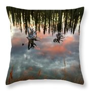 Reflections Off Pond In British Columbia Throw Pillow