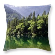 Reflections On Arrow Bamboo Lake Throw Pillow