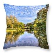 Reflections On Cibolo Creek Throw Pillow