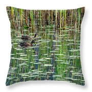 Reflections On Duck Pond Throw Pillow