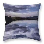 Reflections On Harris Throw Pillow