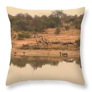 Reflections On Safari Throw Pillow